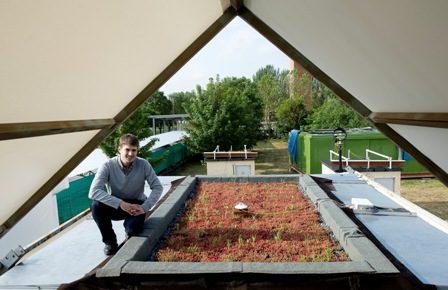 Las cubiertas vegetales reducen el consumo energético