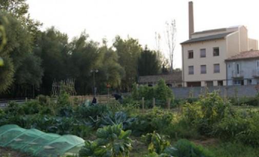 Sabadell prepara una ordenanza para regular los huertos urbanos de la ciudad