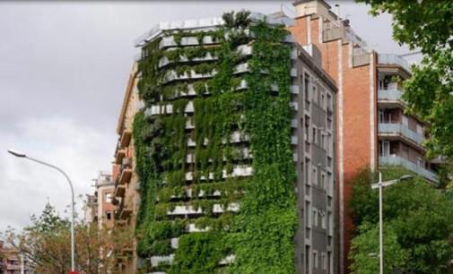 Barcelona instalará jardines verticales en medianeras