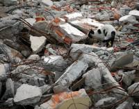 Galicia recuperará el 70% de sus residuos de construcción y demolición