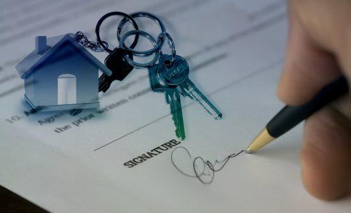 Experto en gestión e intermediación inmobiliaria